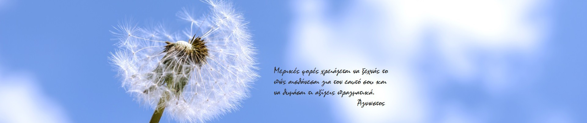 Spring sky & quote