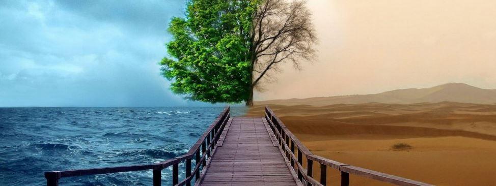 Διαφορά μεταξύ αληθινής ψυχοθεραπείας και ψυχικής ανακούφισης